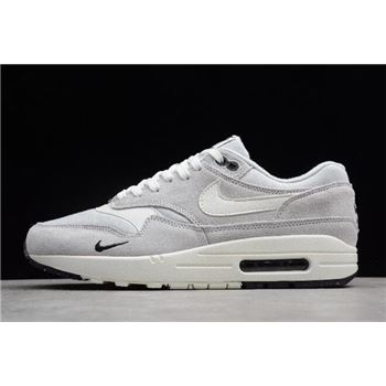 Nike Air Max 1 Mini Swoosh Pure Platinum/Sail-Black-White 875844-006